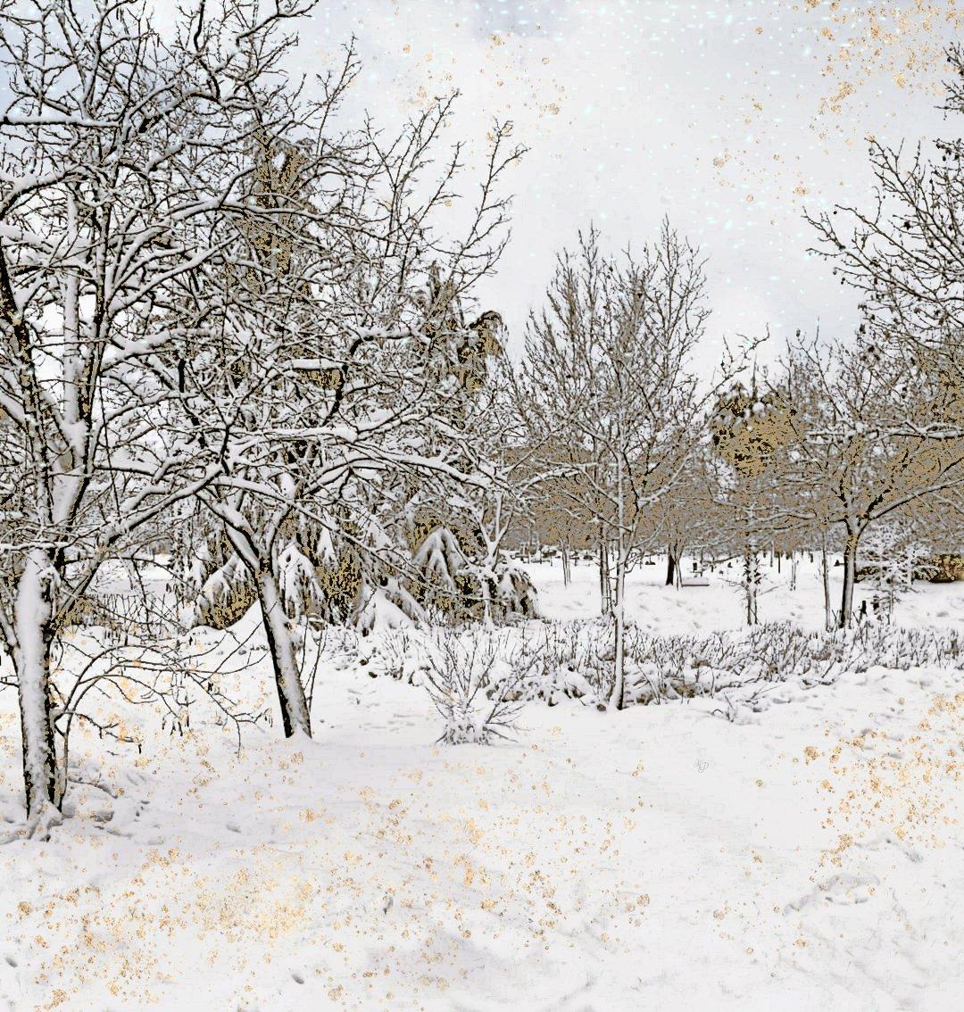 Jugando con la nieve...retoque fotográfico 🖌️📸.    #Filomenamadrid #filomena #BorrascaFilomena #Madrid  #rastro #nieve #borrasca #snow  #españa #fotografia #photography #foto #photo #fotografiaurbana #streetphotography #travelphotography #fotodeviajes