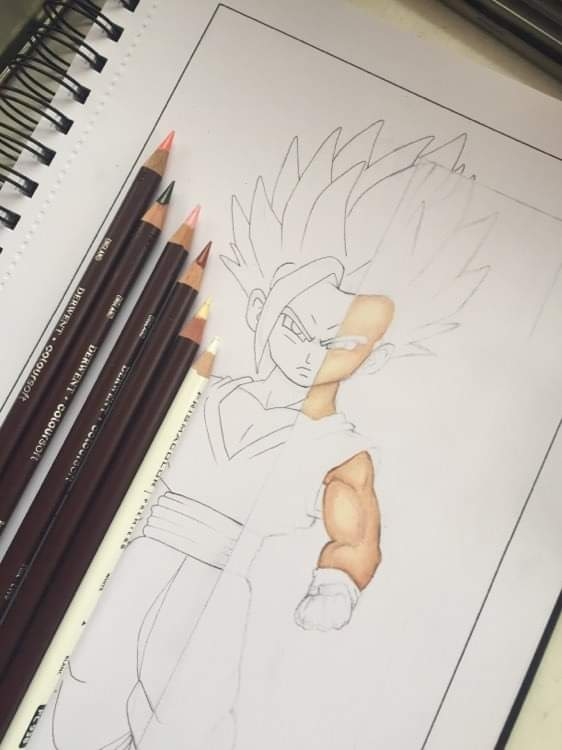 I started drawing gohan🤭 #dbs #dbz #db #dragonball #dragonballz #dragonballsuper #wip #workinprogressart #wipart #colouredpencil #drawing #draw #gohan #supersaiyan2 #cellsaga #lineart #linework #ink #inkdrawing