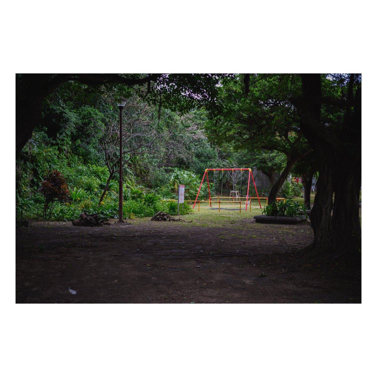 明暗。 #写真 #ファインダー越しの私の世界  #写真シェア #写真好きと繋がりたい #Nikon #Z6 #マクロプラナー #Makroplanar #Milvus #お写ん歩 #沖縄 #vsco