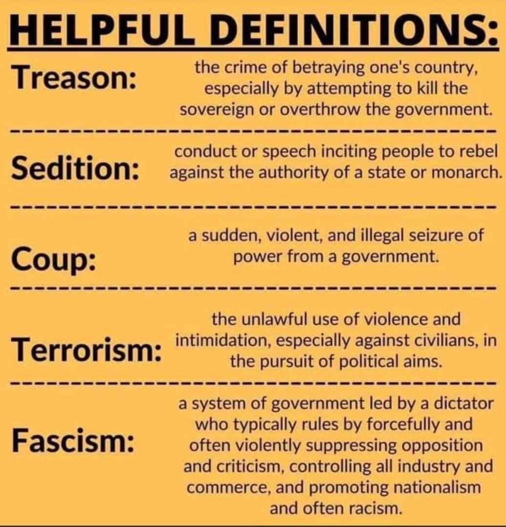 Just so we are clear #Treason #Sedition #coup #terrorism #Fascism #AmericaOrTrump
