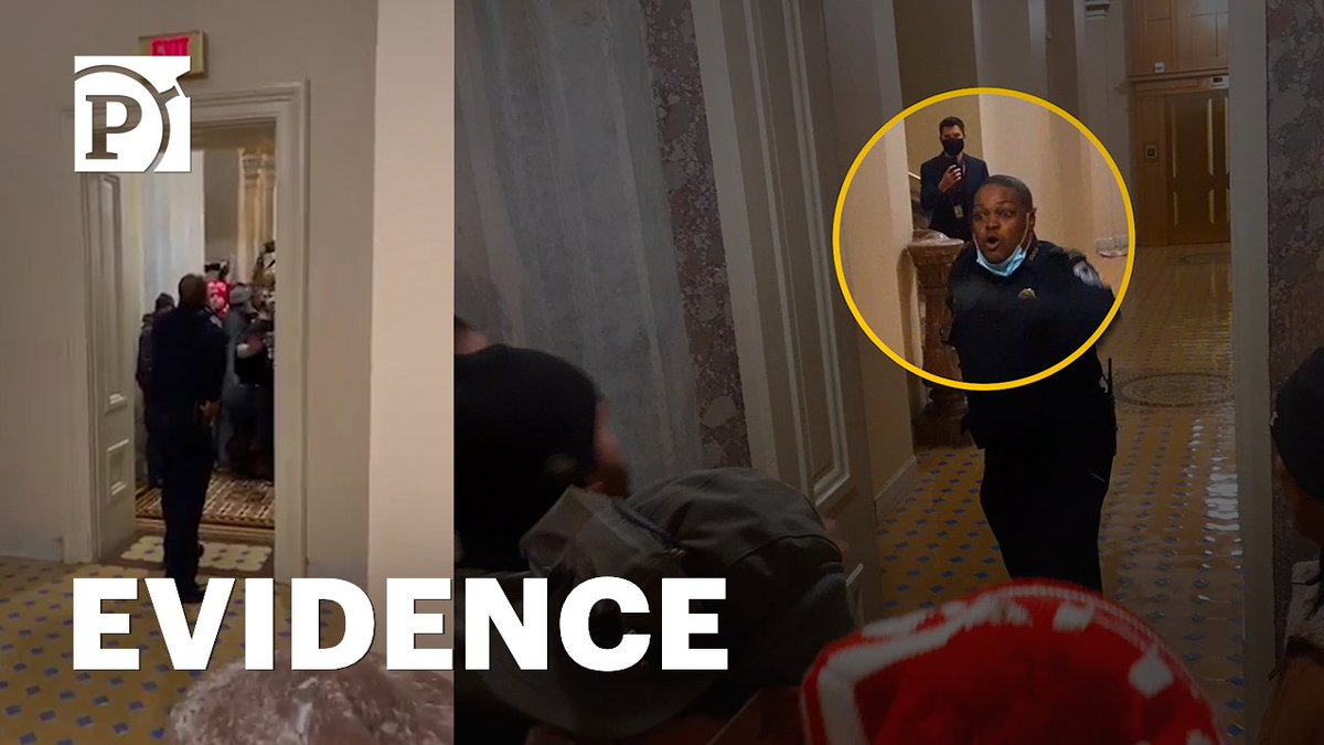 Shortly after the Jan. 6 riots at the Capitol, a video of a Black police officer luring a mob away from Senate chambers went viral. ProPublica found a new vantage point of the same event from a trove of footage uploaded to Parler.