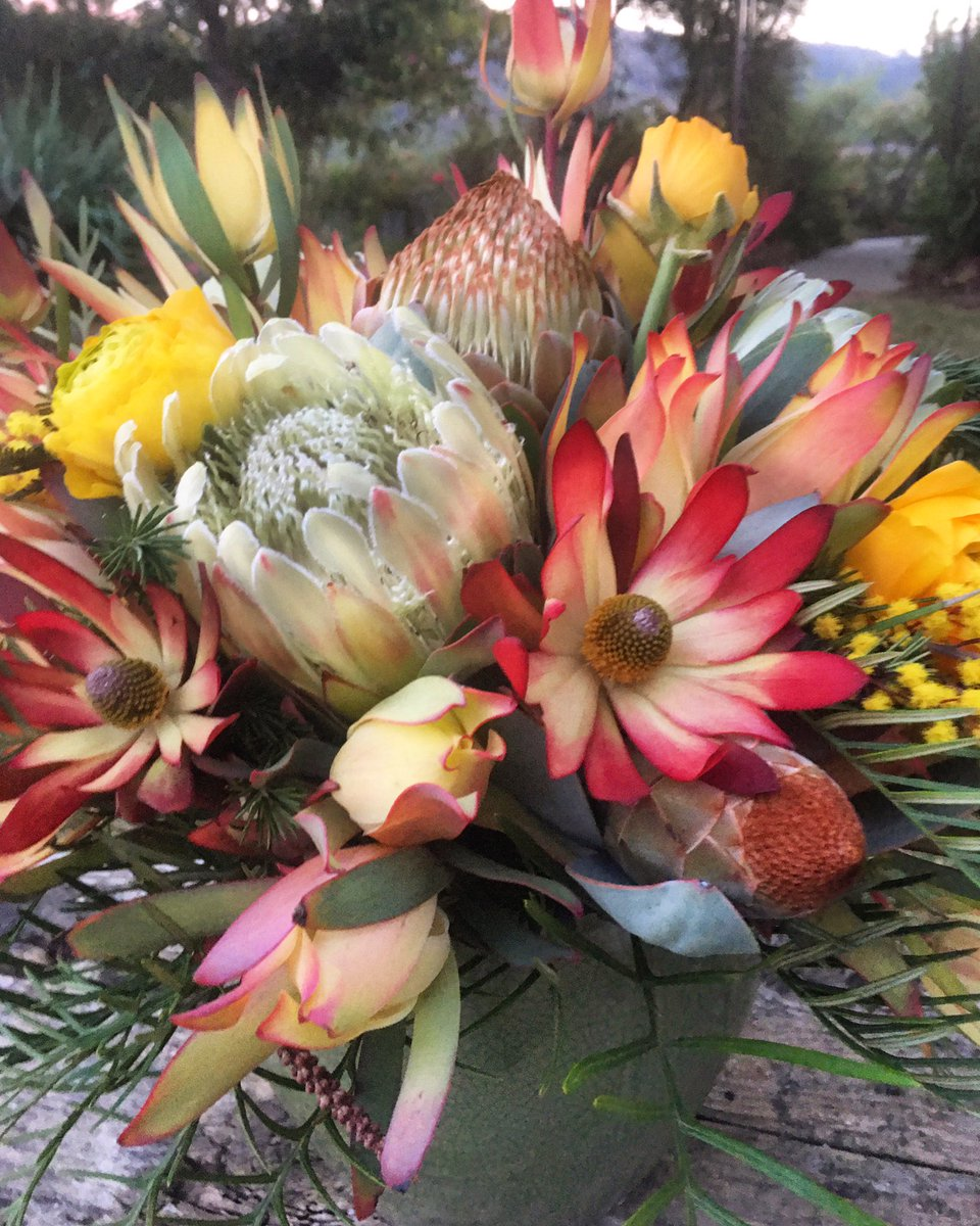 Happy Friday! Bring nature inside & add a little color to your weekend. Keeping flowers somewhere that you will see as you are coming & going will lift your spirits & help you unwind. 💐 #fridayfeeling #flowerpower #stressrelief #weekendmood #inspiredbynature #protea #cagrown