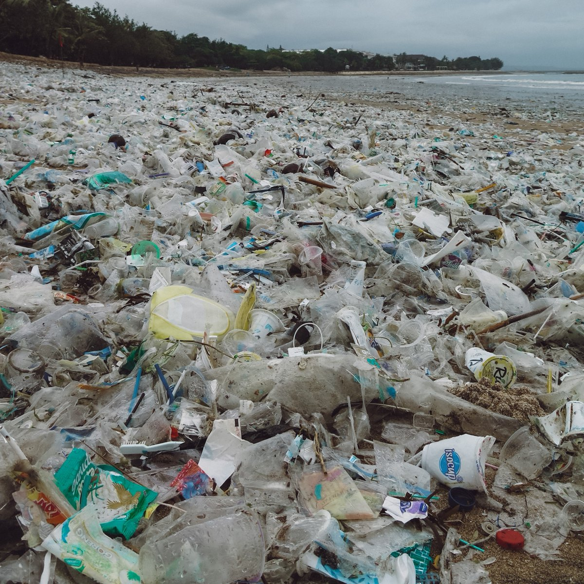 Monsoon season is part of life for our crews in Bali, but the amount of plastic that washes up on this tropical paradise gets worse every year.   In just two days, our crews recovered nearly 8,000 lbs of trash from Kuta Beach, most of which was single-use plastic bottles & cups.