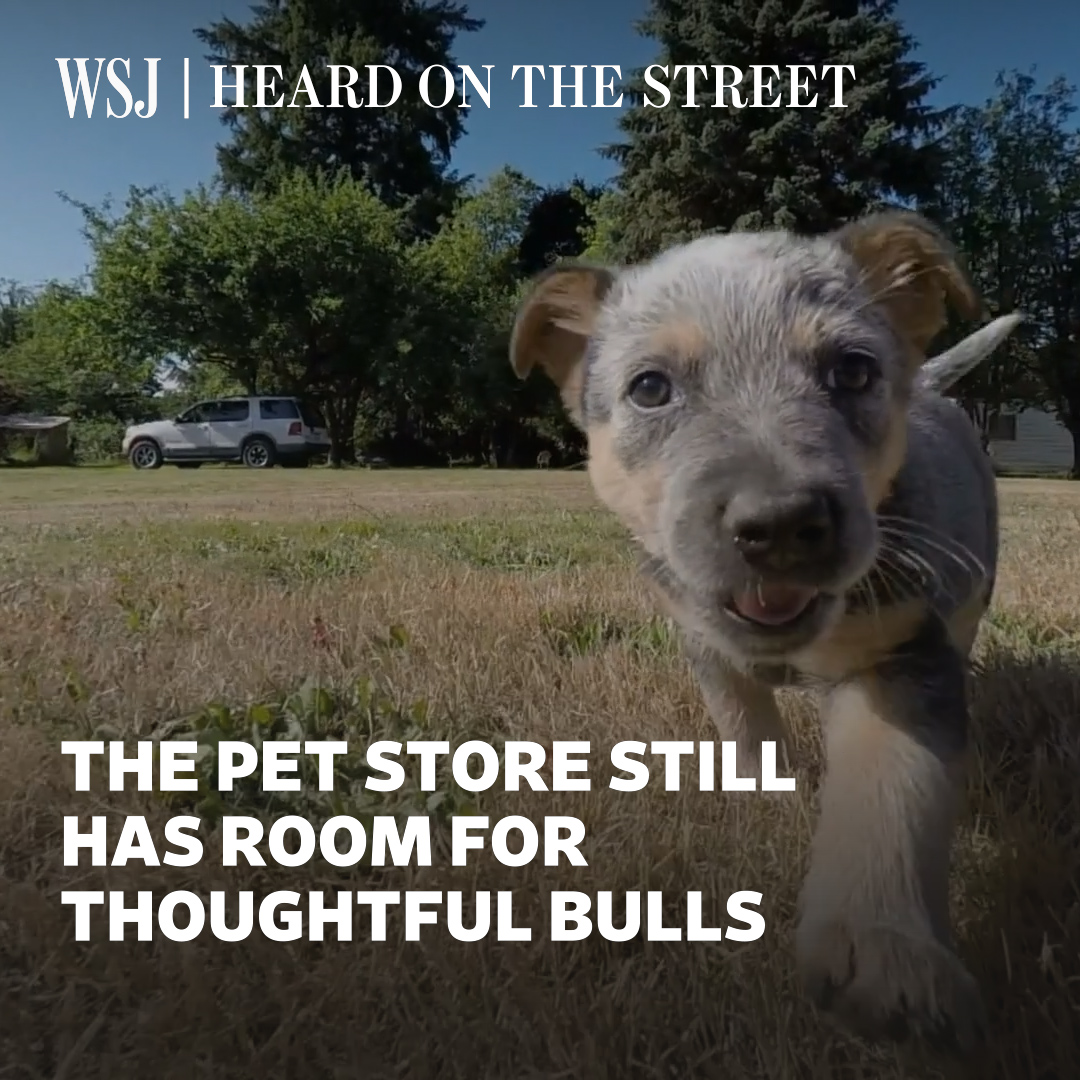 The pandemic has likely increased pet ownership, which is positive for stocks like Chewy. But investors need to be choosy as the pandemic adoption boom tails off. @WSJheard explains. #WSJWhatsNow