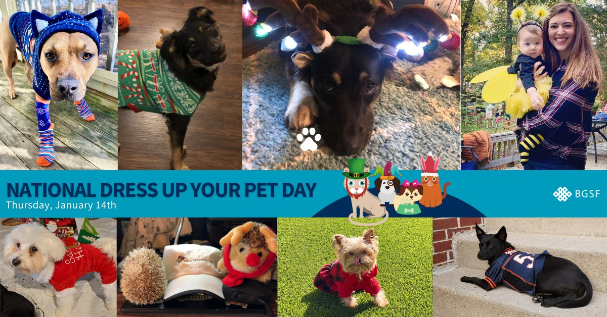 It's #FurryFriday 🐶 🐱 and we're celebrating by showing our favorite co-workers in their #WFH finest in honor of National Dress Up Your Pet Day. Thanks to all the pets for strutting their fluff! #nationaldressupyourpetday