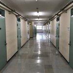 どっちがどっち?早稲田大学16号館と東京拘置所がほとんど一緒!