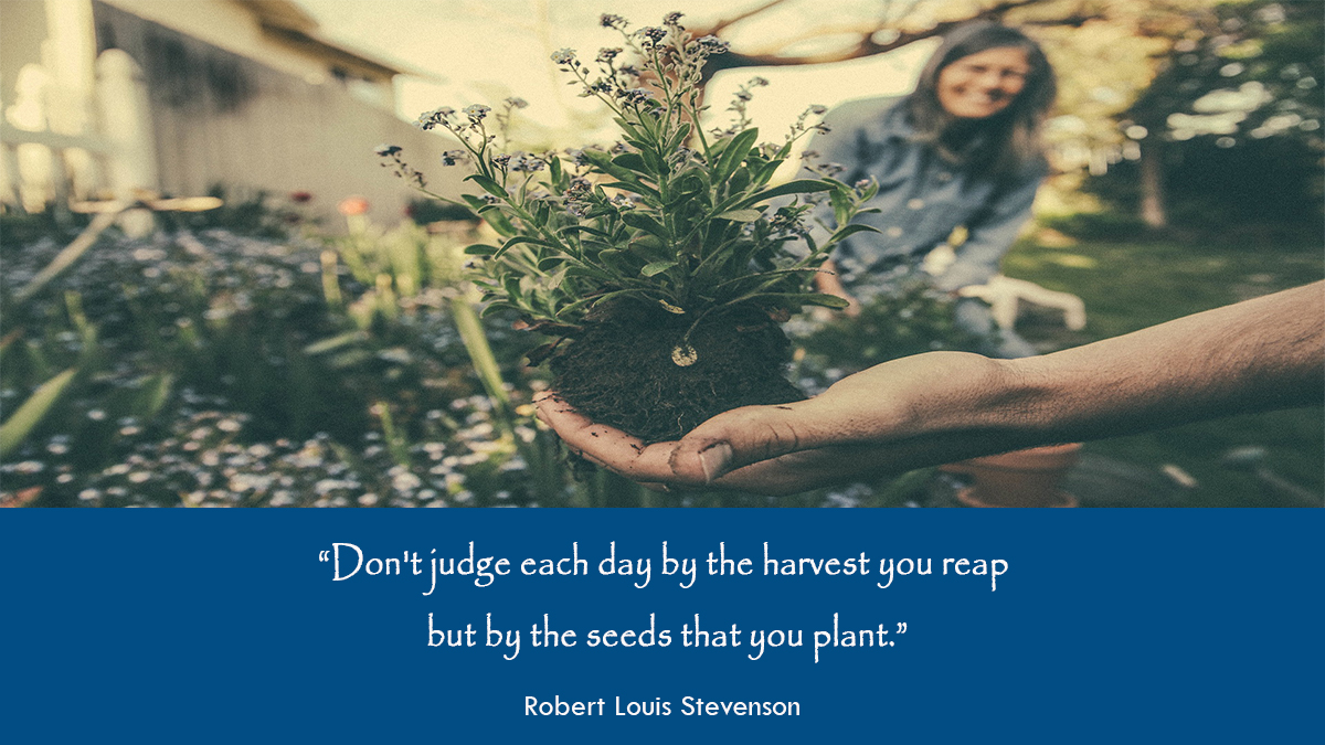 Top story: @adelahafez: 'Success counts by the amount of seeds that we plant #thextraordinarionly #growthzone #SuccessTRAIN #FridayThoughts @kimadele10 @AmandaRay02 @loveGoldenHeart @Dkell999 @Hazloe3 @DrUmeshPrabhu @On… , see more