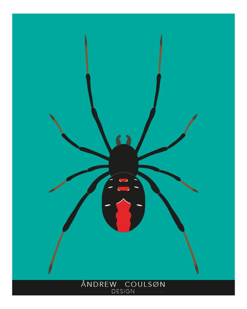 A Spider Design used on a T-Shirt 👕🕷️  Logo Designs/T-Shirt Designs available ✅ Check out my RedBubble!  - - - - - #AdobeIllustrator #design #illustration #designer #GraphicDesigner #LogoDesign #tshirtdesign #like4like #LikeForLikes #spider #Animal