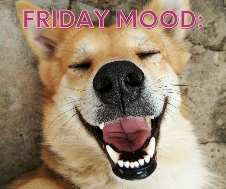 Friday mood: ACTIVATE! 🎉😎  #Smile #friday #tgif #Fridaylove #FridayAtWork #fridayvibes #Vibes #goodvibesonly #goodvibes #happy #Friends #follow #Family #Goodtimes #MakePlans #Happiness #POTD #Love