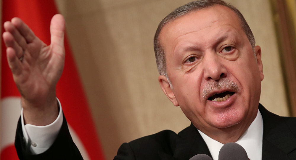 أردوغان دخلنا مسارًا جديدًا في العلاقات التركية الأوروبية