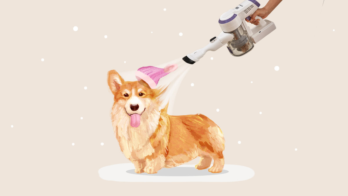 #NationalHatDay Does your furriend have a hat for the cold? Share with us! 🐈 🐕  *Featured vacuum - A10 Dash cordless vacuum cleaner  #furriend #petlovers #cozywinter