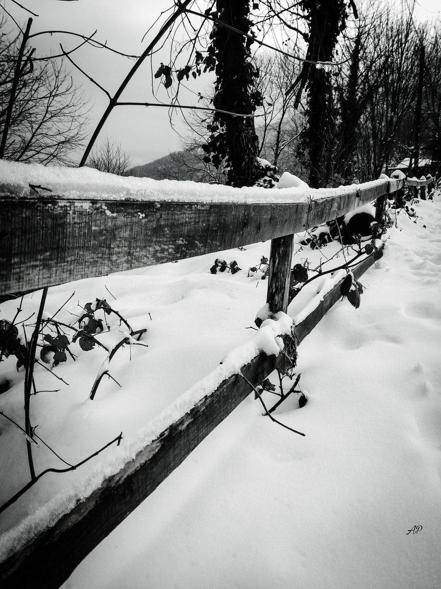 #photo #photography #photographer #pic #picture #PictureOfTheDay #fotograf #blackandwhitephotography #monochrome #winteriscoming #WINTER #snow