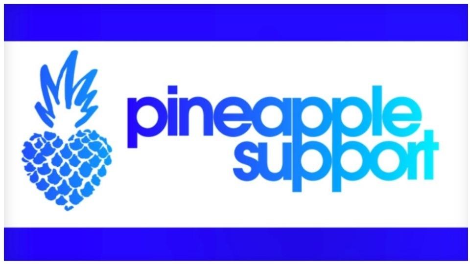 PornDeals Joins Pineapple Support as a Sponsor @PineappleYSW xbiz.com/news/256827/po…