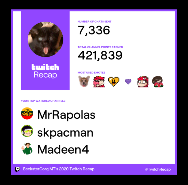 Twitch says my most watched channels in 2020 were @MrRapolas, @skpacman, and @Madeen4. And also I like to use cute/heart emotes 💖 #TwitchRecap