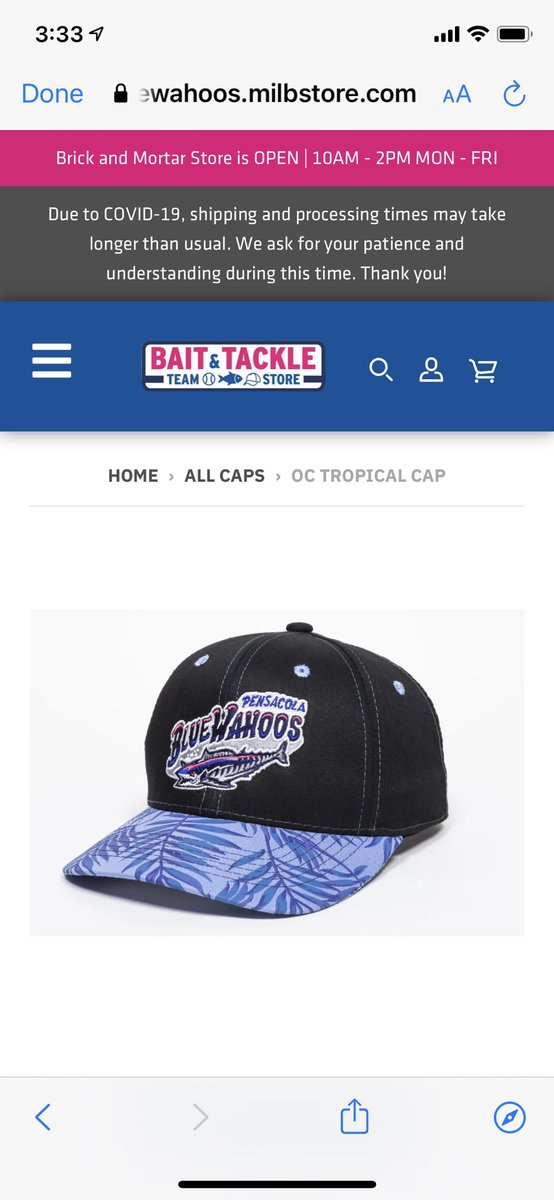 @BlueWahoosBBall @MiLBPromos @MiLBStore #NationalHatDay this one is super sweet
