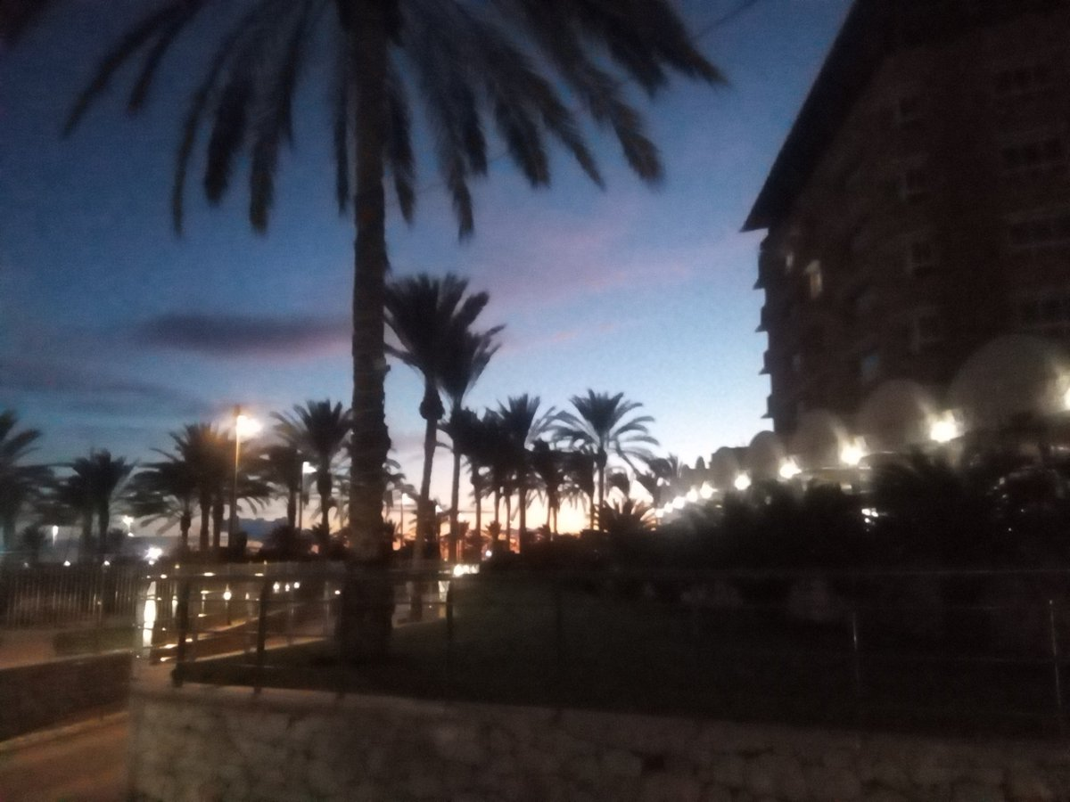 la Playa de Aguilas ✨🌴🌃🌌 #beach #thebeach #palmtrees #palmtree #nightlife