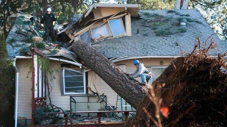 Será um sinal da natureza? Parte de árvore cai e fica cravada em cama entre casal nos Estados Unidos 🌳 -->