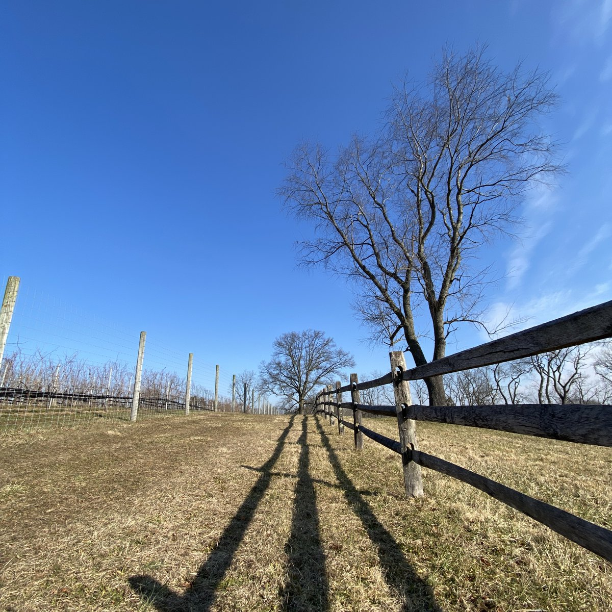 More exciting Karamoor event announcements are on the horizon!  For the latest updates, be sure to keep a watch on our social media accounts and at   #newyear #outdoorevents #pawine #pawinery #makeitmontco #montcopa #drinklocal #drinklocalpa