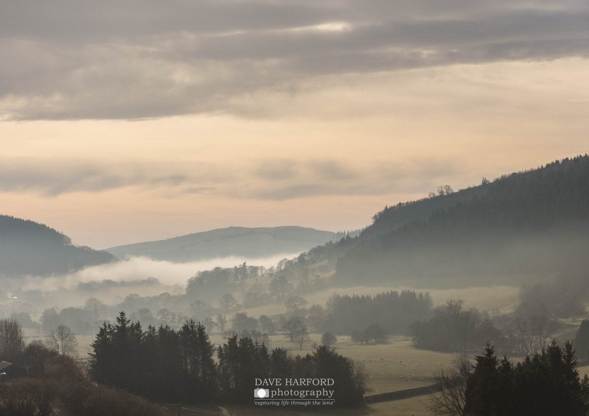 Day 11   Back to #wales but this time beautiful Mid Wales.   Taken early morning with a stunning cloud inversion in the valley!   #DavesLockdownPhotoClub   #PositiveVibes #photography #smile