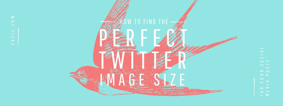 🔥Creating the perfect Twitter image (and knowing the best way to use it) is easy with these tips!  #TwitterTips