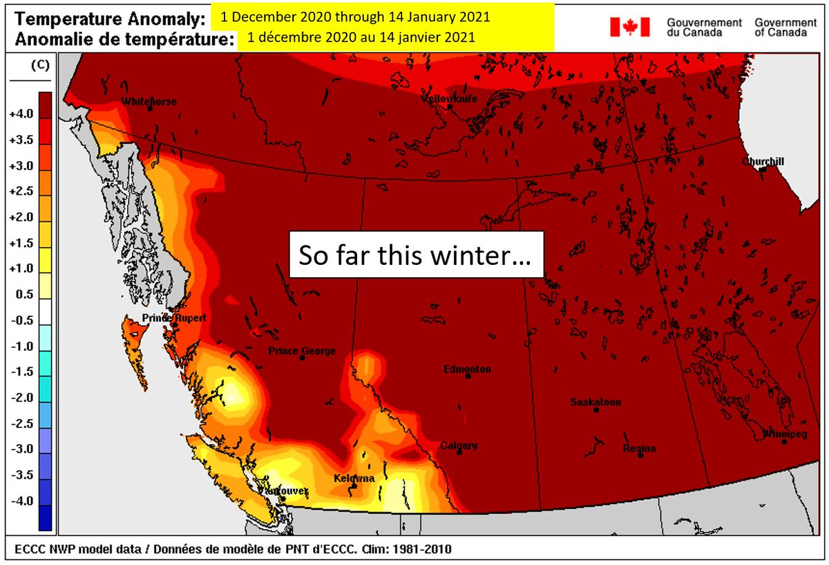 Wondering where winter is? Temperatures are on track to take a dive late next week.  ❄️  Time to get out your gloves & toques, shovels, install winter tires and prep your house!   Check back here next week!   #ShiftIntoWinter #DriveBC #BCstorm