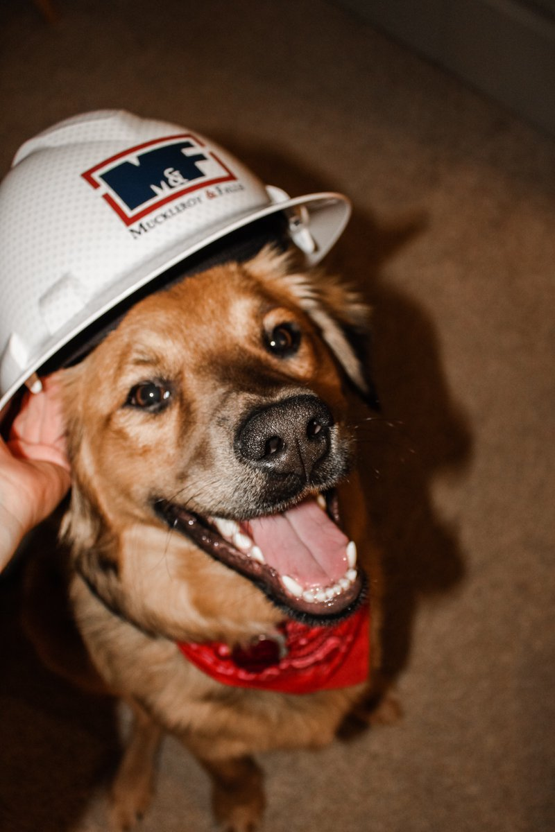 In honor of National Hat Day, we thought we'd feature our own favorite hat. The M&F hard hat, of course! 👷🏻 Can't say it's ever looked cuter!  #MandF #NationalHatDay #hardhat