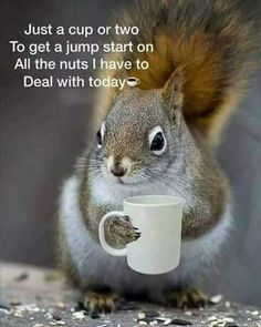 """Today I'm #grateful for #FaceTime chats & playing @AmongUsGame & sleep. #MentalHealthAwareness #DepressionIsReal Today's #PositiveAffirmation is """"I'll survive this.""""  #coffeetime ☕️ #keepingupspirits  #thursdaymorning  #ThursdayMotivation  #ThursdayThoughts  #thursdayvibes"""