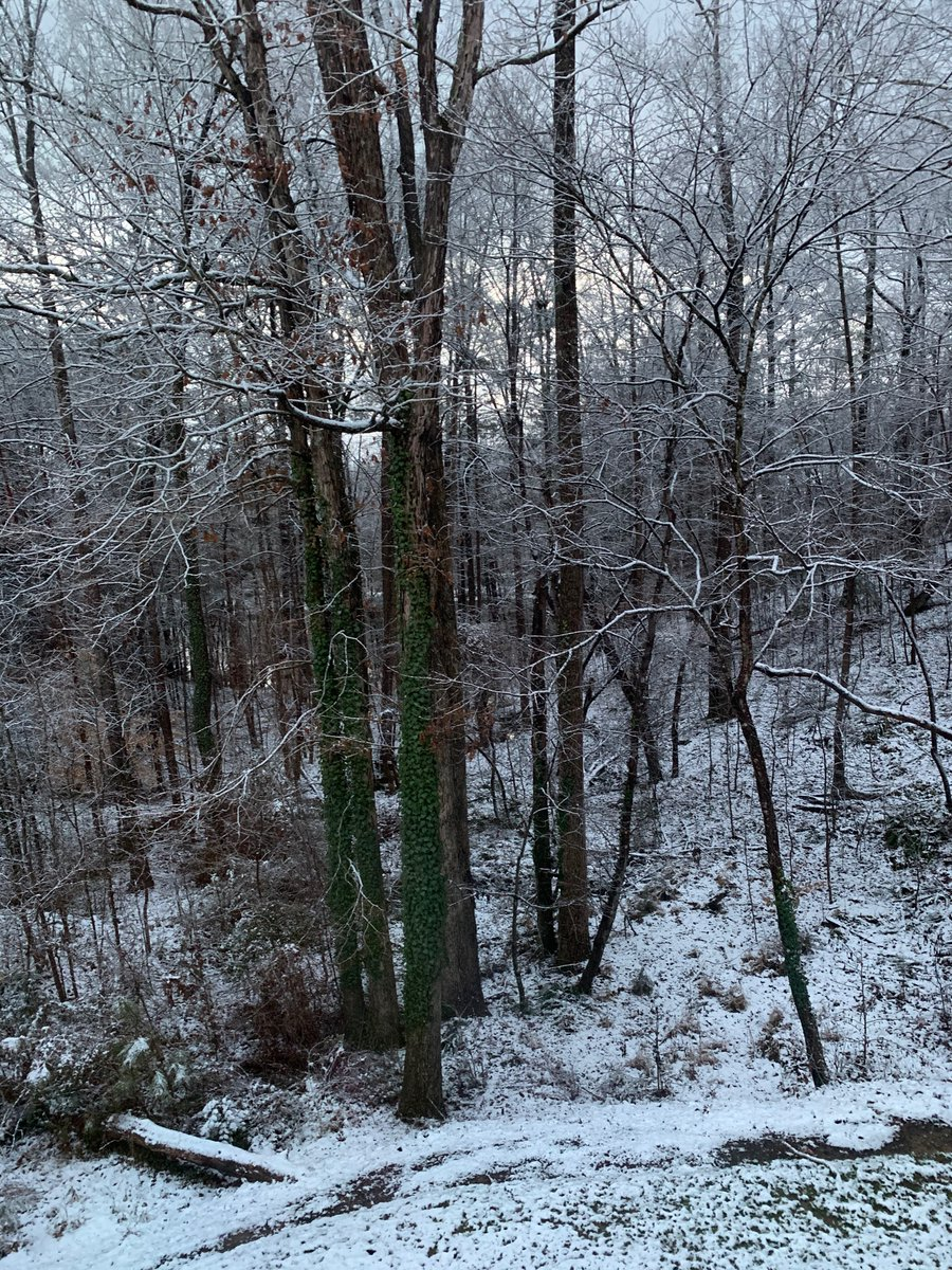 Got some snow. Now it can go the hell away. #ncwx