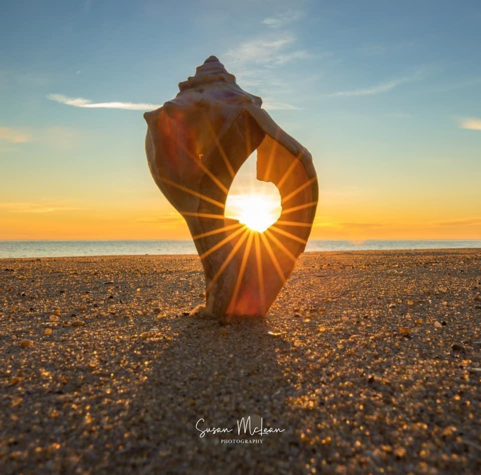 """""""Let nothing dim the light that shines from within"""" - Maya Angelou  #thursdaymotivation  📷 Susan McLean Photography  #visitlewes #visitrehoboth #quoteoftheday #motivation #inspiration #quotes #quote #mayaangelou #letsgo #sunshine #sunrise #sunrisephotography #sunriselover"""