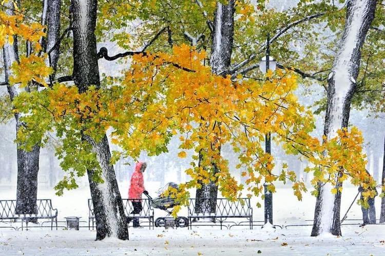 Alexander Petrosyan, Russia  #alexanderpetrosyan #russia #simpleisbeautifulphotography #winter #snow #walk #photography #art #photographer #photogallery #nature #beautiful #love #travel  #reflection #shadow #light  #minimalism #simple #landscape #streetphotography #portrait