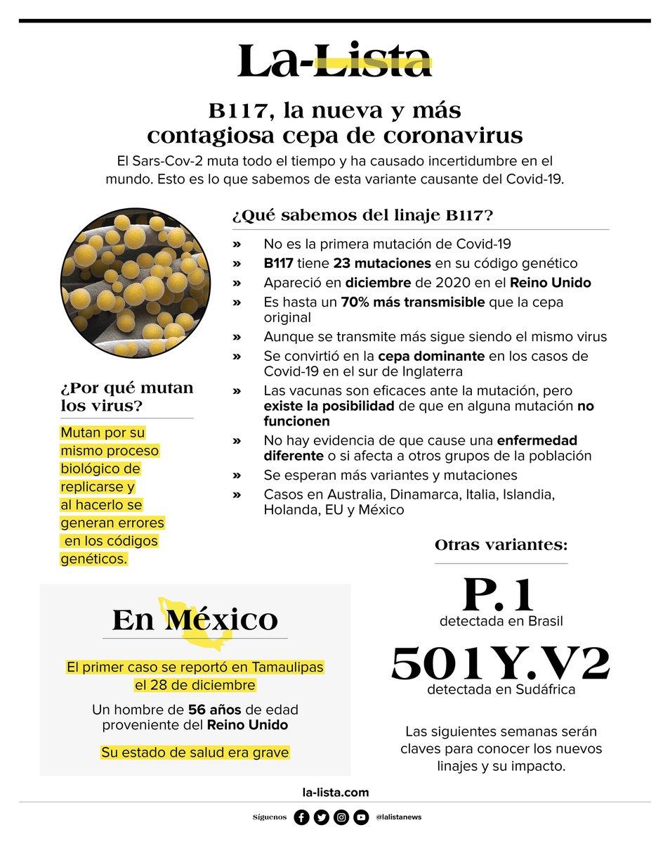 Una de las nuevas cepas del coronavirus que más preocupa al mundo es la B117, la variación británica.   Te contamos lo que debes saber sobre ella en una imagen: https://t.co/QMiRUmcxMG https://t.co/bt577DkoPz