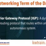 Image for the Tweet beginning: Interior Gateway Protocol (IGP): A