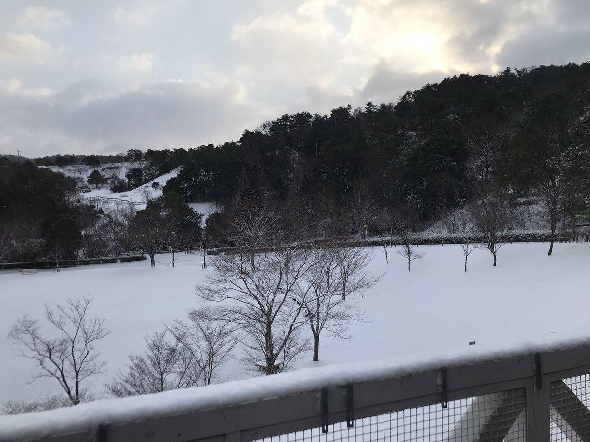 天気 結婚 彩花 松雪 予報