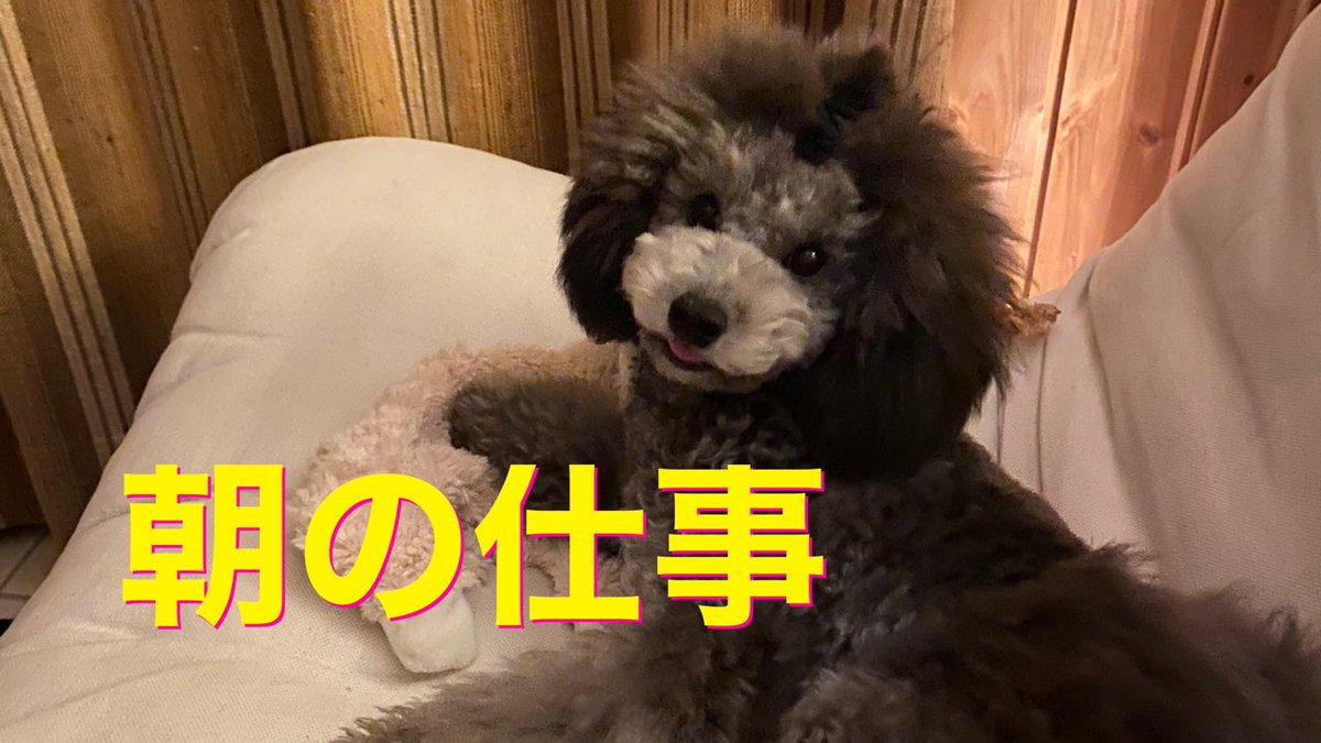 ツイッター 宇野 人 磨 昌 自由