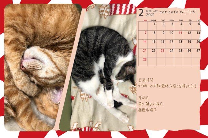 FEBRUARY Business Day Calendar
