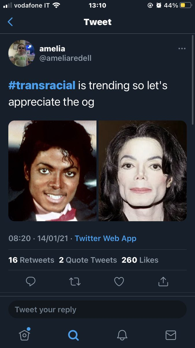 "tw// transphobia/ racism/ blackface   If you don't know, there has been this #transracial tag which is basically white people doing (tw) blackface, and calling themselves ""transracial"" mocking not just black but also trans people. Literally what the actual fuck,,"