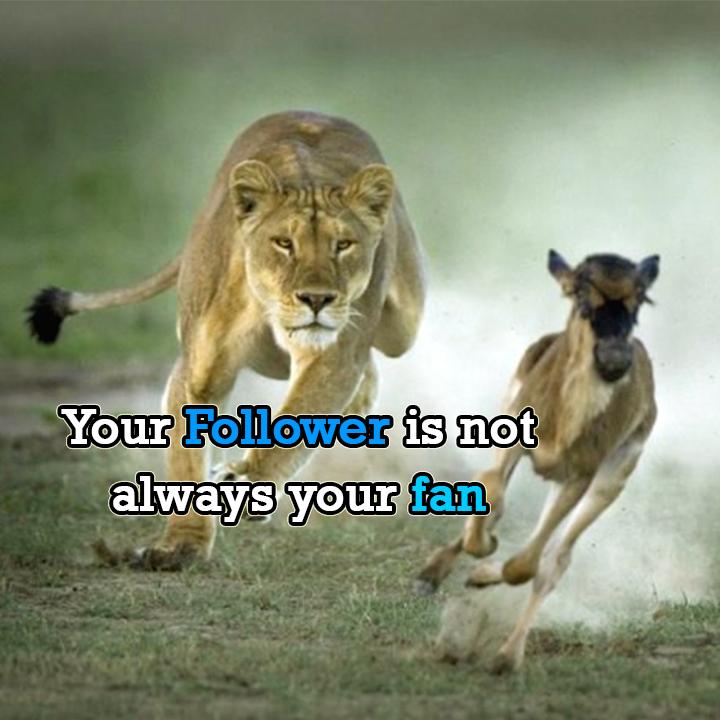 Support each other. #MotivationalQuotes #MotivationalMonday #Motivation #RetweeetPlease #like #follobackforfolloback #follobackinstantly #SupportSmallStreamers #supportsmallbusiness #support #help #mondaythoughts #tuesdayvibe #friends #photooftheday #photography