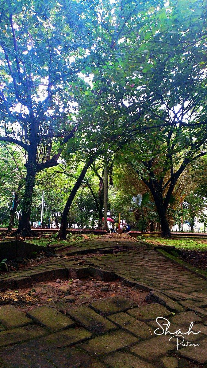 What kind a place do you like?  #nature #landscape #naturephotograpy #love #heart #man #photography #landscapephotography #rthimambonjol #sunrise #morning #dew #saturdaymorning #padang #path #minangkabau #westsumatera #life #light #dark #luck #bad #park