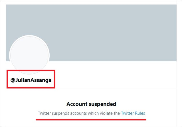 Centuries from now, if humans still exist, historians may well sum up Twitter with this image.   #JulianAssange