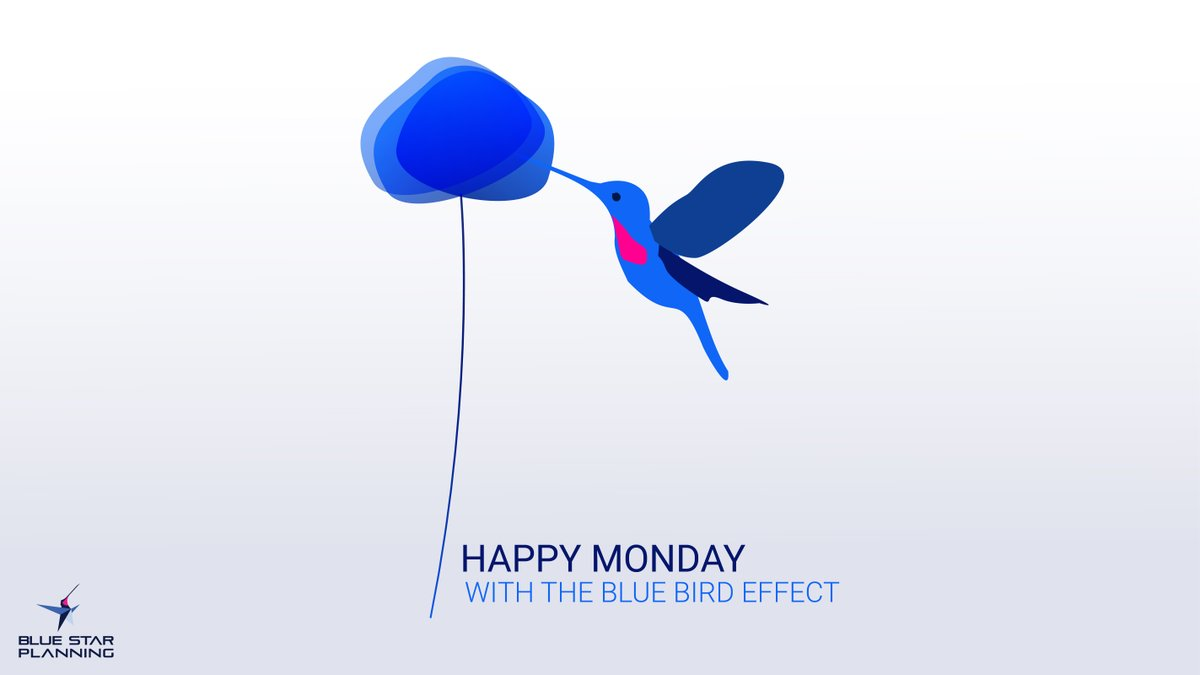 Blue Monday vs Blue Bird.  The Blue Bird effect is our belief in changing small things that have a non-linear positive influence on your complex production environment.   #bluemonday #bluebird #positive #conceptart