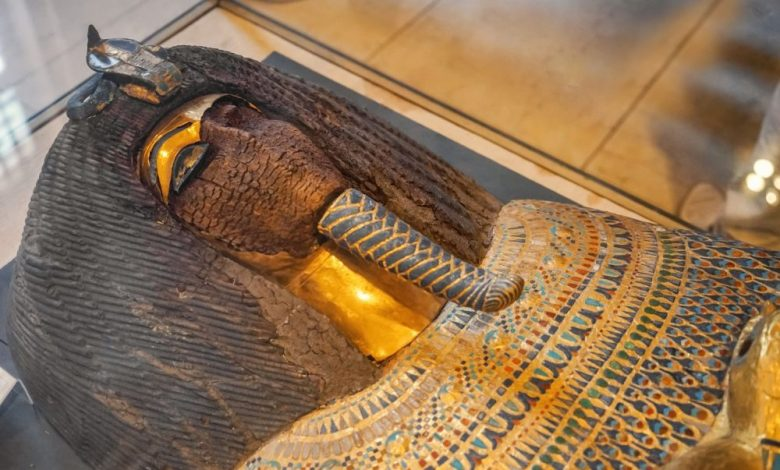 The Fascinating Story Behind Ancient Egypt's Golden Mummies: Until about 25 years ago, no one had any idea of the extent of Bahariya's archaeological treasure. This changed by complete chance and the help… of a donkey. In 1996,…  #history #weird #science