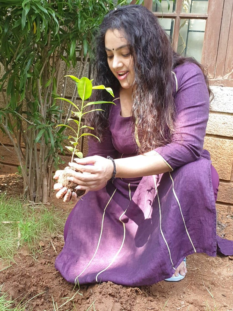 Indian actress #meena  accepted #HaraHaiTohBharaHai #GreenindiaChallenge   from @Devi_Nagavalli Planted 3 saplings. Further She nominated @VenkyMama @KicchaSudeep @KeerthyOfficial @ManjuWarrier4  to plant 3 trees & continue the chain..special thanks to @MPsantoshtrs