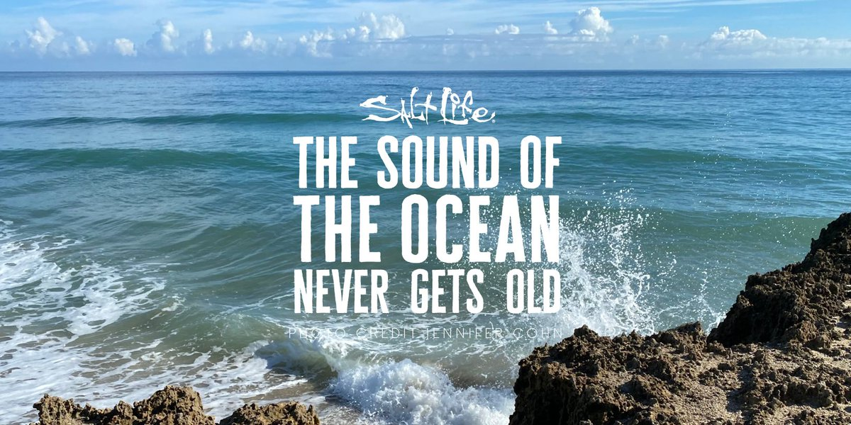 The Sound of the Ocean 🌊 Never Gets Old  #MondayMood #LiveSalty