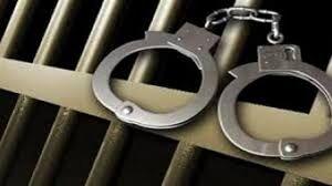 یکشنبه ۲۸ دی ۹۹ در یک مهمانی خصوصی در یک تالار در نجف آباد اصفهان، پنج شهروند بازداشت شدند.  تالار محل برگزاری مهمانی نیز با دستور قضایی توسط پلیس نظارت بر اماکن شهرستان نجف آباد به دلیل برگزاری مهمانی مختلط پلمب شد. #Iran  #HumanRights
