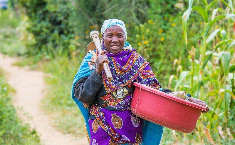 كيف يساهم برنامج الأغذية العالمي في تحسين الأمن الغذائي والاقتصادات المحلية المستدامة في #أفريقيا؟  نمكّن النساء ونستثمر فيهن! 👩🌾💪
