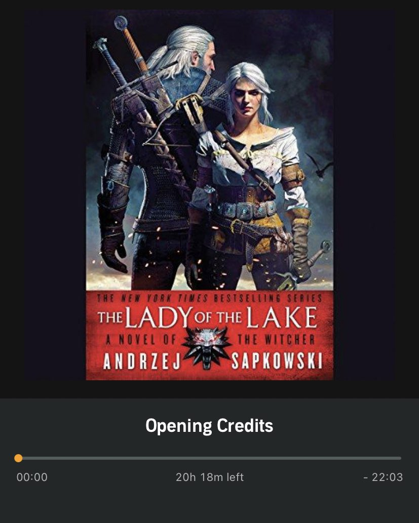 Now onto the final Witcher novel