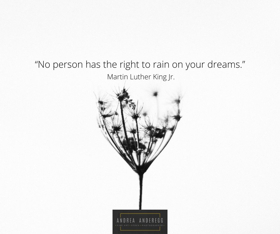 #martinluther #MLK #MLKDay #MLKDay2021 #MartinLutherKingDay #MartinLutherKing #MartinLutherKingJr