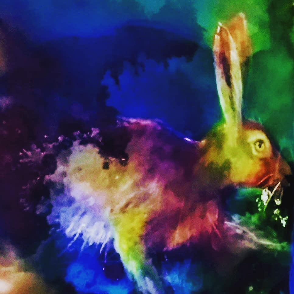 Happy Blue Monday 💙💙   Hare from a while ago, colour enhanced 🐇🐰  #bluemonday #blue #monday #hare #animalart #animal #wildlife #art #artwork #animalart #artist #animalartist #wildlifeartist #colours #instagramart #artoninstagram #instagramartists #pa… https://t.co/Q85Sw7sltv https://t.co/AtE9J8Yt0o