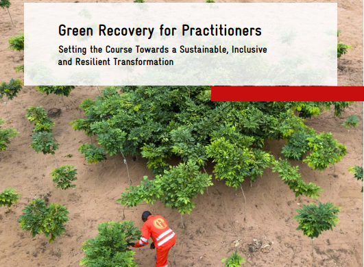 Great to have worked on this green recovery guidebook for @giz_gmbh, outlining how economic advisors can set the course for a sustainable, inclusive & resilient recovery