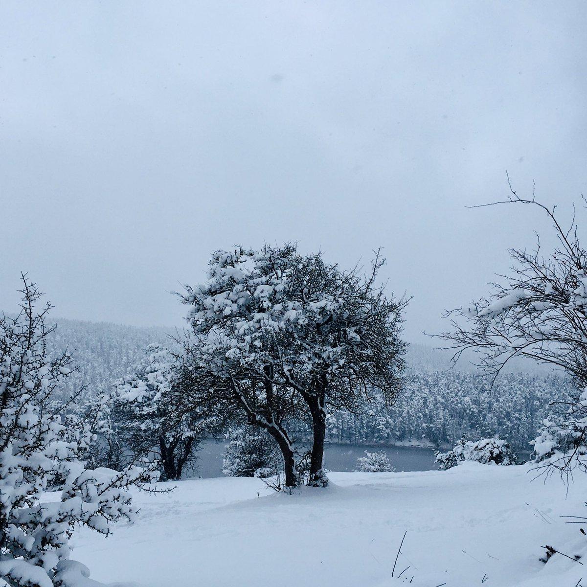 Herkese hayırlı akşamlar & iyigeceler  #photooftheday #Snowday #Canon70D #Shutterstock #PhotoModeMonday #photography #PHOTO #SnowWhite #Snowing